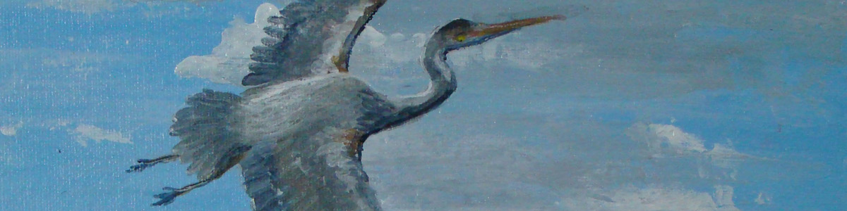 Contact Waccamaw Arts and Crafts Guild